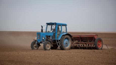 Сівба ярої пшениці в Росії завершена