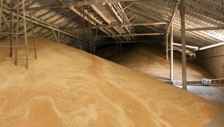 Запасы зерна в закромах Казахстана снизились до 7,8 миллионов тонн