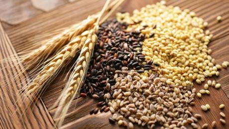 Объемы экспорта зерновых культур из Украины достигли 33,300,000 тонн