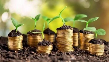 Вложения в сельское хозяйство в Северно-Казахстанской области выросли на 15%