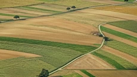 Украинский Парламент проголосовал против снятия моратория на продажу земли