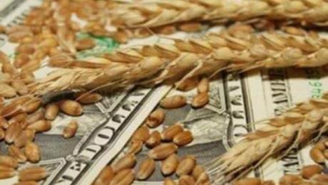 С начала 18/19 МГ из Украины на экспорт было поставлено более 35 миллионов тонн зерна