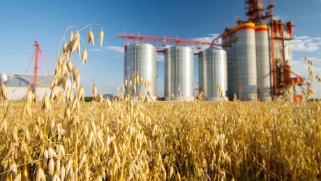 Объемы экспортных поставок агропродукции из Украины составили 8,6 млрд долларов