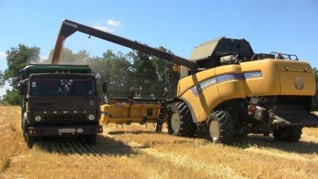 Сельхозпроизводители Запорожской области собрали 3 миллиона тонн зерна