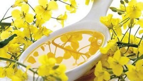 Обсяги експорту ріпакової олії з України зросли в 2,4 рази