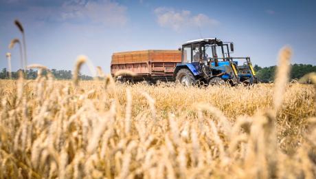 Ulyanovsk region (Kazakhstan) increases agricultural exports
