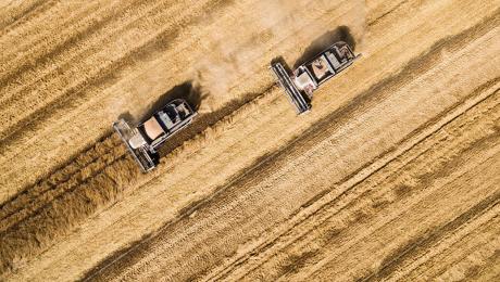 Експорт аграрної продукції з України збільшився на 25%