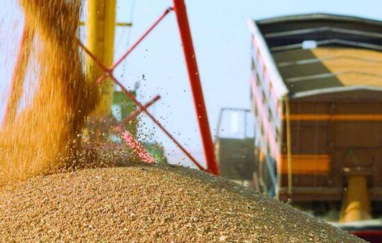 Экспорт зерна из Украины за 2 недели апреля составил более 1 миллиона тонн