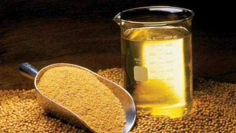 За первые 9 месяцев 2020 года экспорт подсолнечного масла из Украины составил почти 5 миллионов тонн
