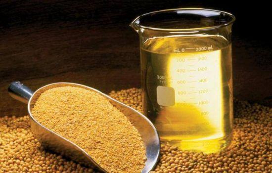 За перші 9 місяців 2020 року експорт соняшникової олії з України склав майже 5 мільйонів тонн