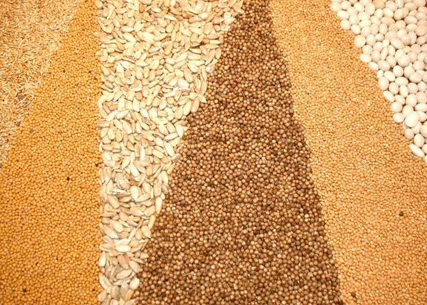 Ukraine is among the top three global grain exporters