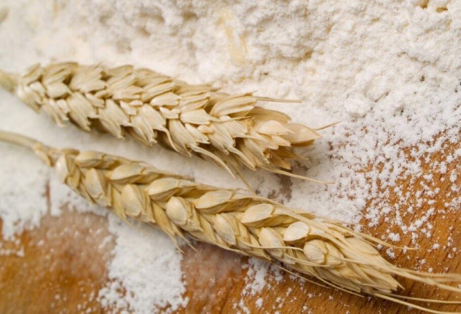 Показатели экспорта зерновых из Украины в текущем маркетинговом году составят 40 миллионов тонн