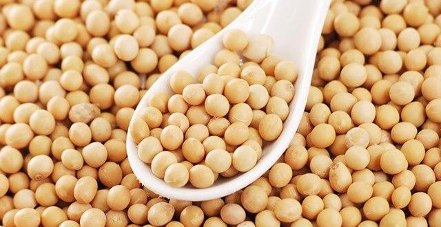 В период с сентября по декабрь экспорт сои из Украины составил 1,2 миллиона тонн