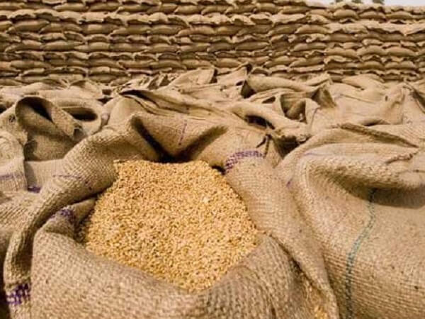 Grain stocks in Kazakhstan in the current marketing year