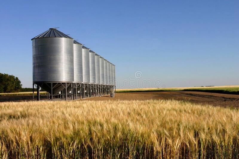 Количество запасов зерна в Казахстане больше прошлогоднего