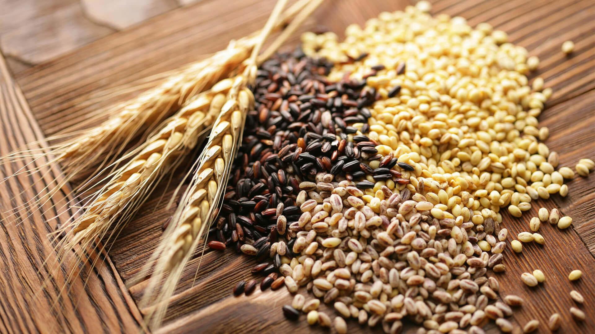 Производство зерновых в мире составит 2,64 миллиарда тонн