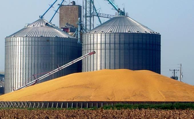 С начала 2018/19 МГ экспорт зерна составил 891 тысячу тонн