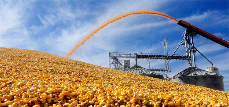 Экспорт зерновых из Украины останется на том же уровне