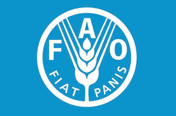 В 2018/19 МГ объем потребления зерновых в мире ожидается на уровне в 2,64 миллиарда тонн