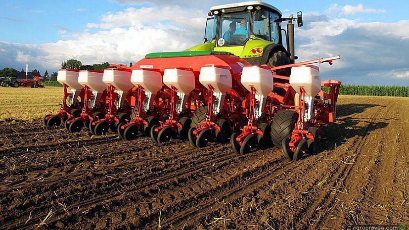 В России прогноз посева основных зерновых культур превышен