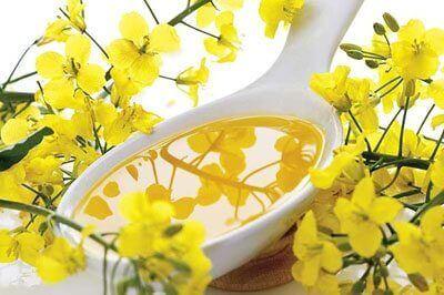 Прирост в производстве масла из рапса в Украине