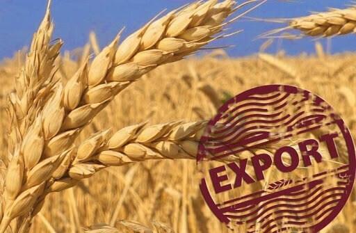 Украина экспортировала более 39 миллионов тонн зерна в сезоне 20/21